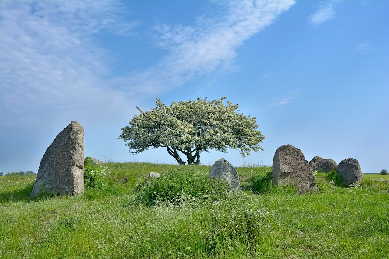 https://www.shutterstock.com/image-photo/megalithic-tomb-nobbin-on-ruegenbaltic-seamecklenburg-1363019048