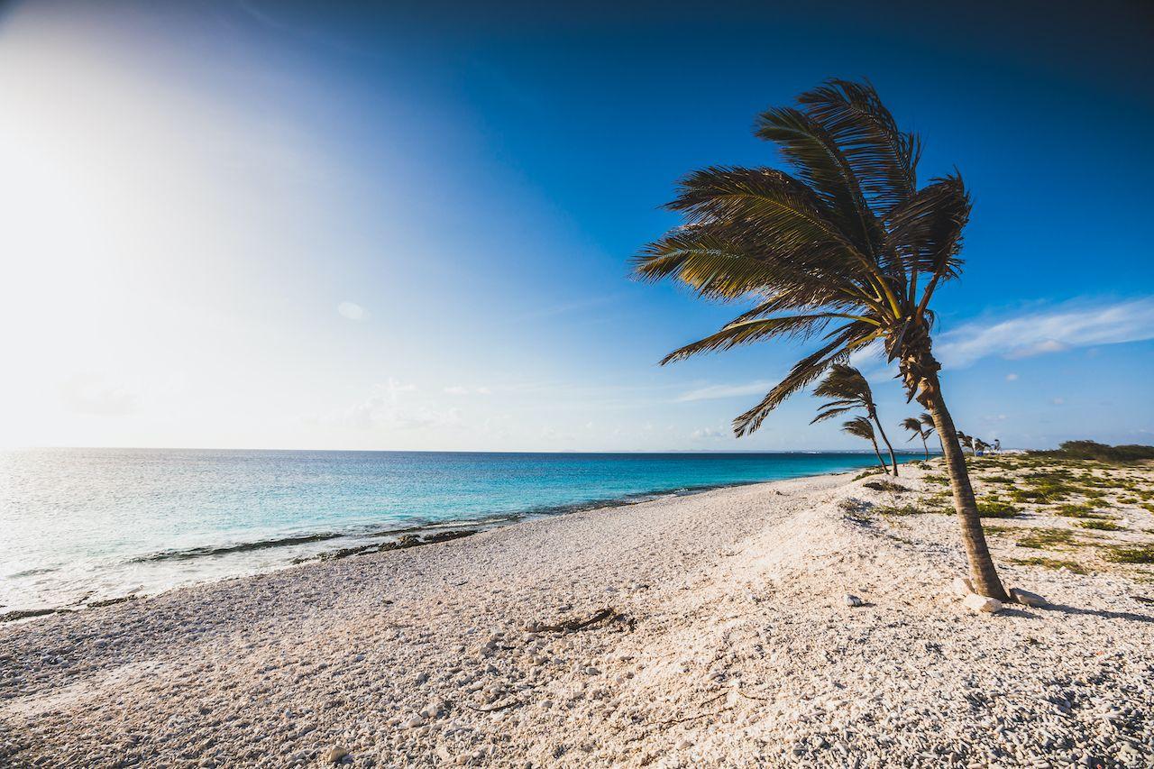 Pink beach in Bonaire