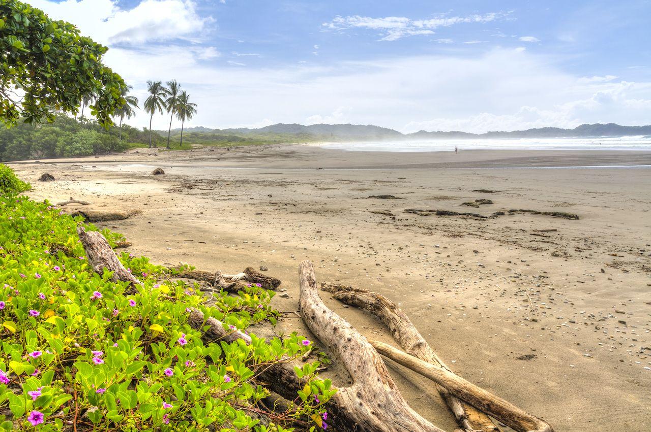 Playa Guiones in Nosara, beaches in Costa Rica