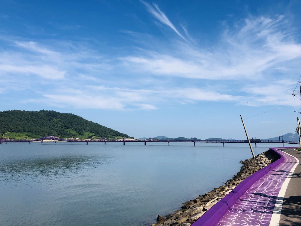 Purple Islands in South Korea