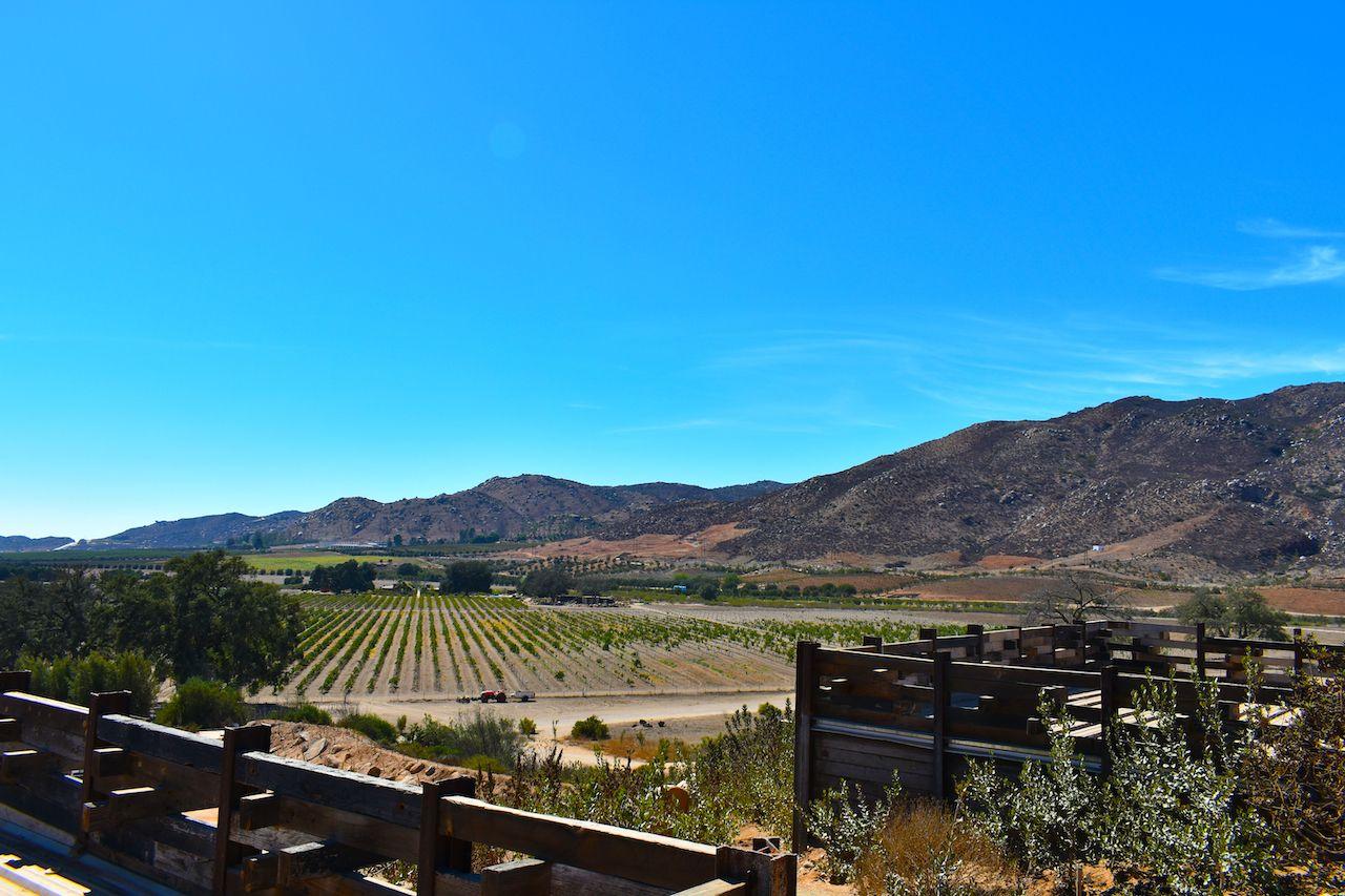 Valley de Guadalupe