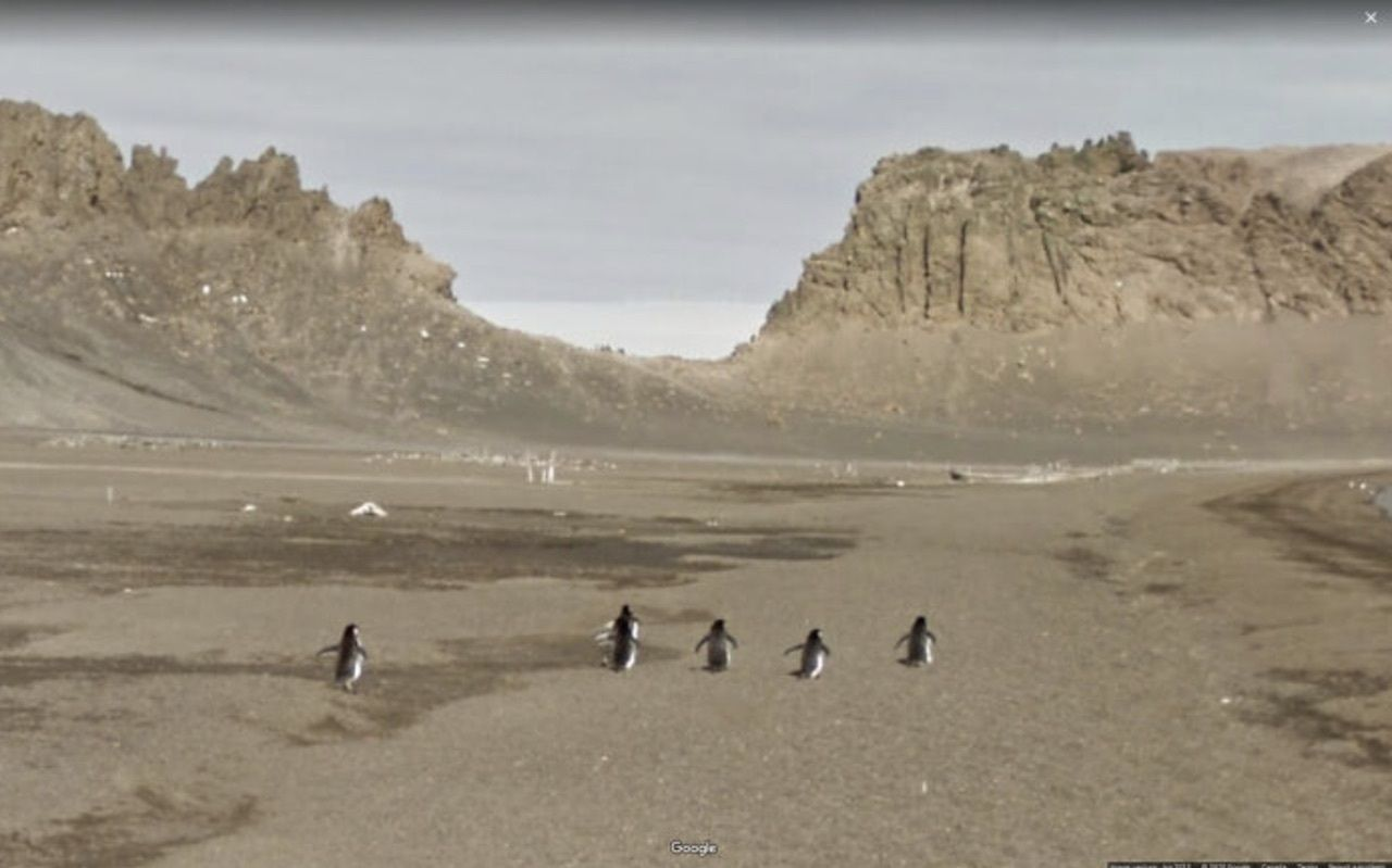 Funny Google Street View photos