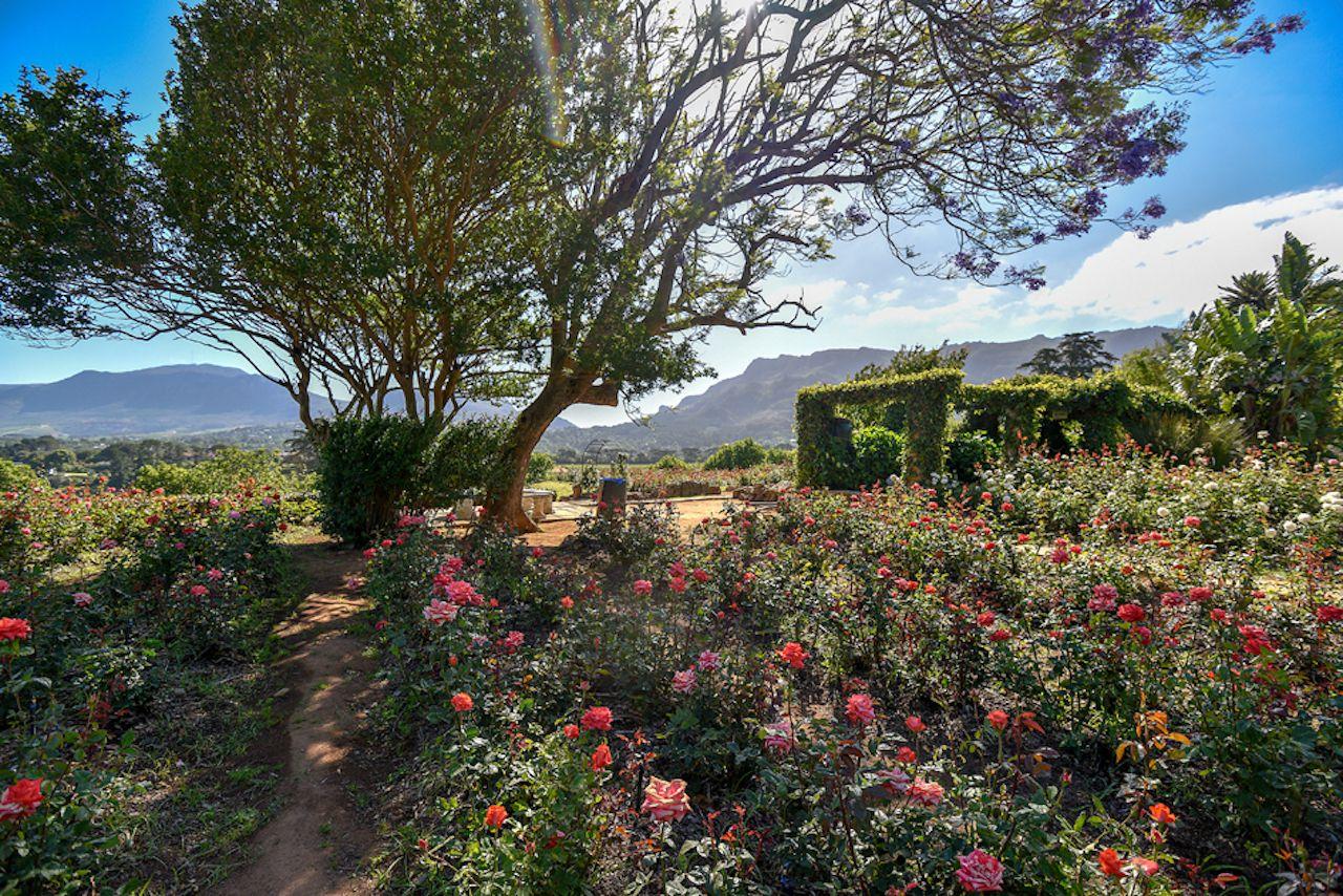 Chart Farm, scenic views Capetown