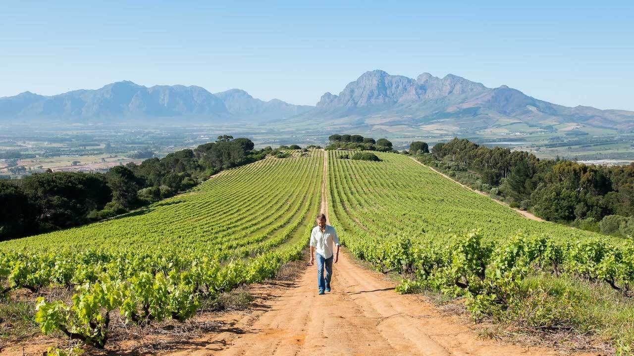 Fairview Wine and Cheese, Paarl , scenic views in Capetown