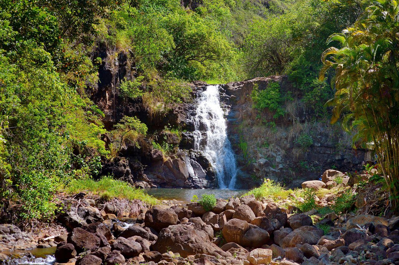 Beautiful tropical waterfall in Waimea Valley park on Oahu island, best views in Oahu