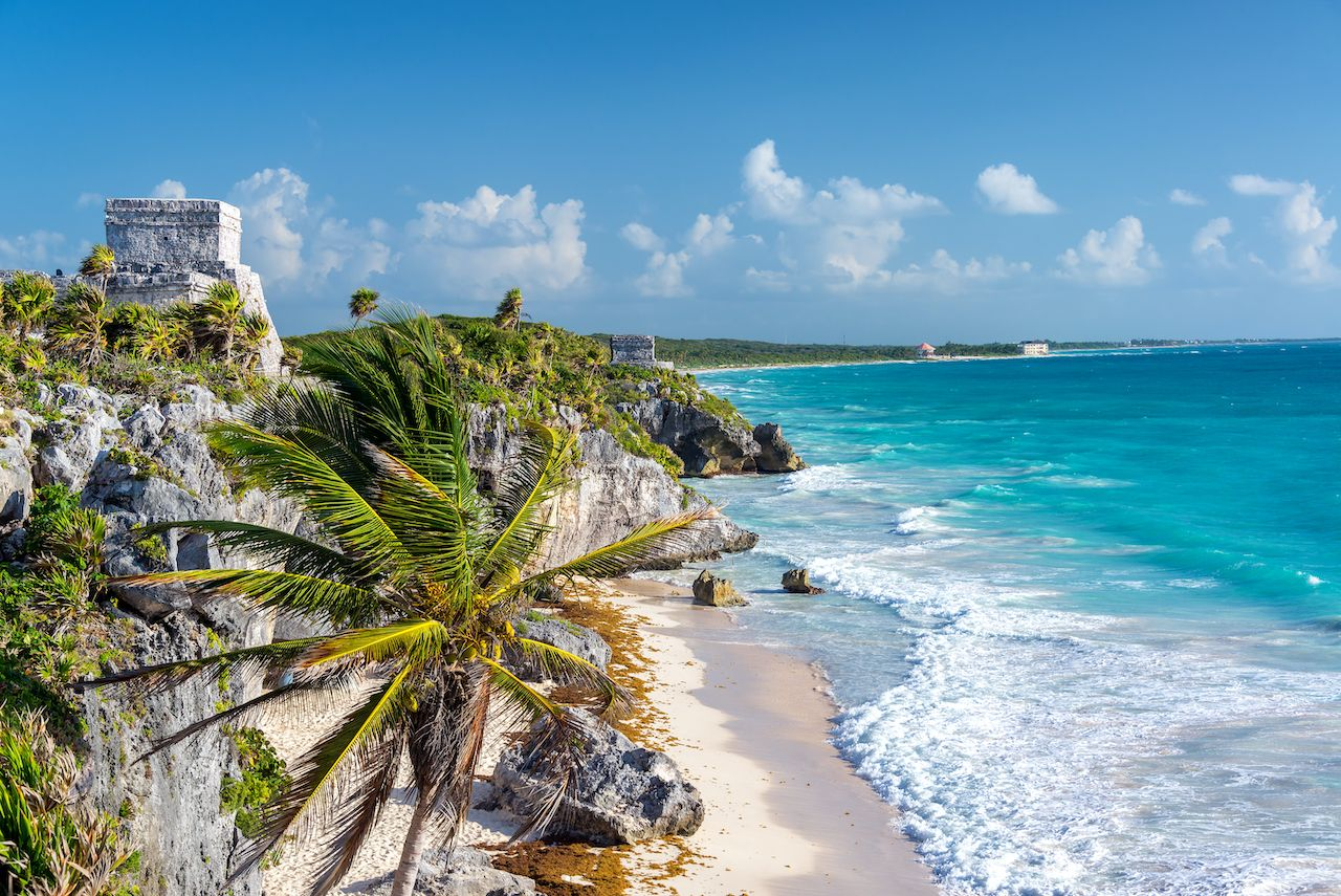 Ruins of Tulum, Mexico and a palm tree overlooking the Caribbean Sea in the Riviera Maya, Yucatán Peninsula pyramids
