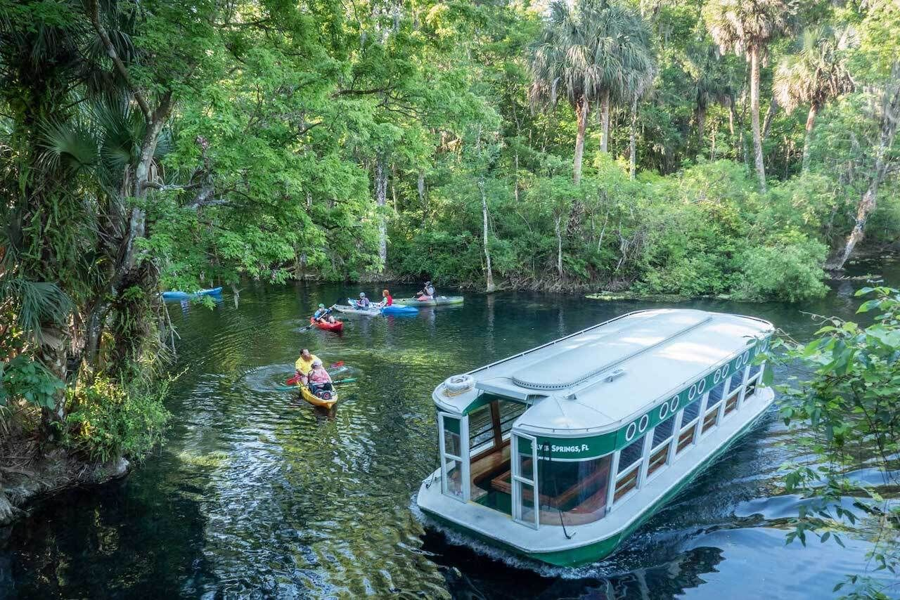 Enjoy a glass-bottom boat ride at Silver Springs State Park