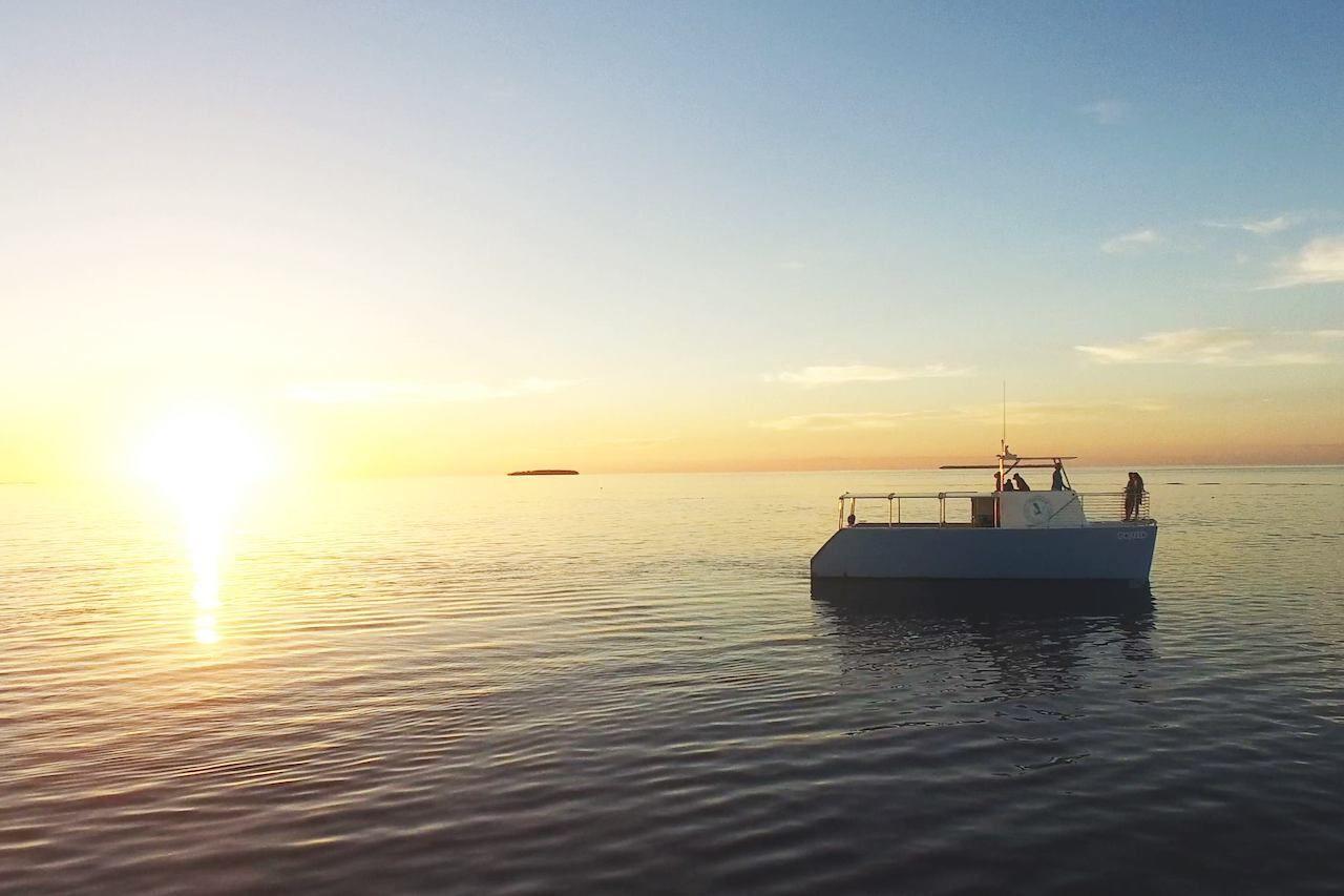 honest-eco-boat-tour-key-west