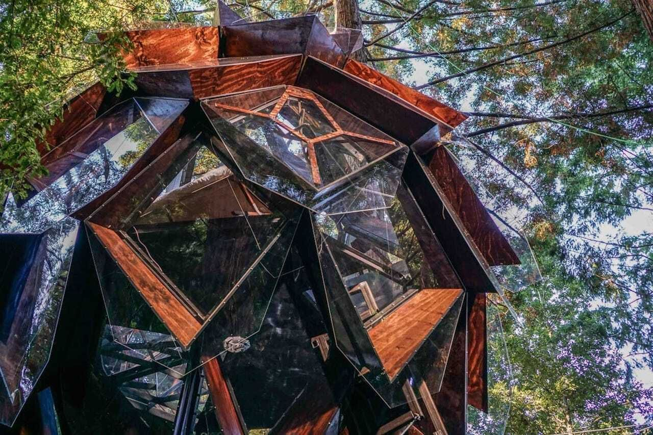 pinecone-treehouse-airbnb-remote-redwoods