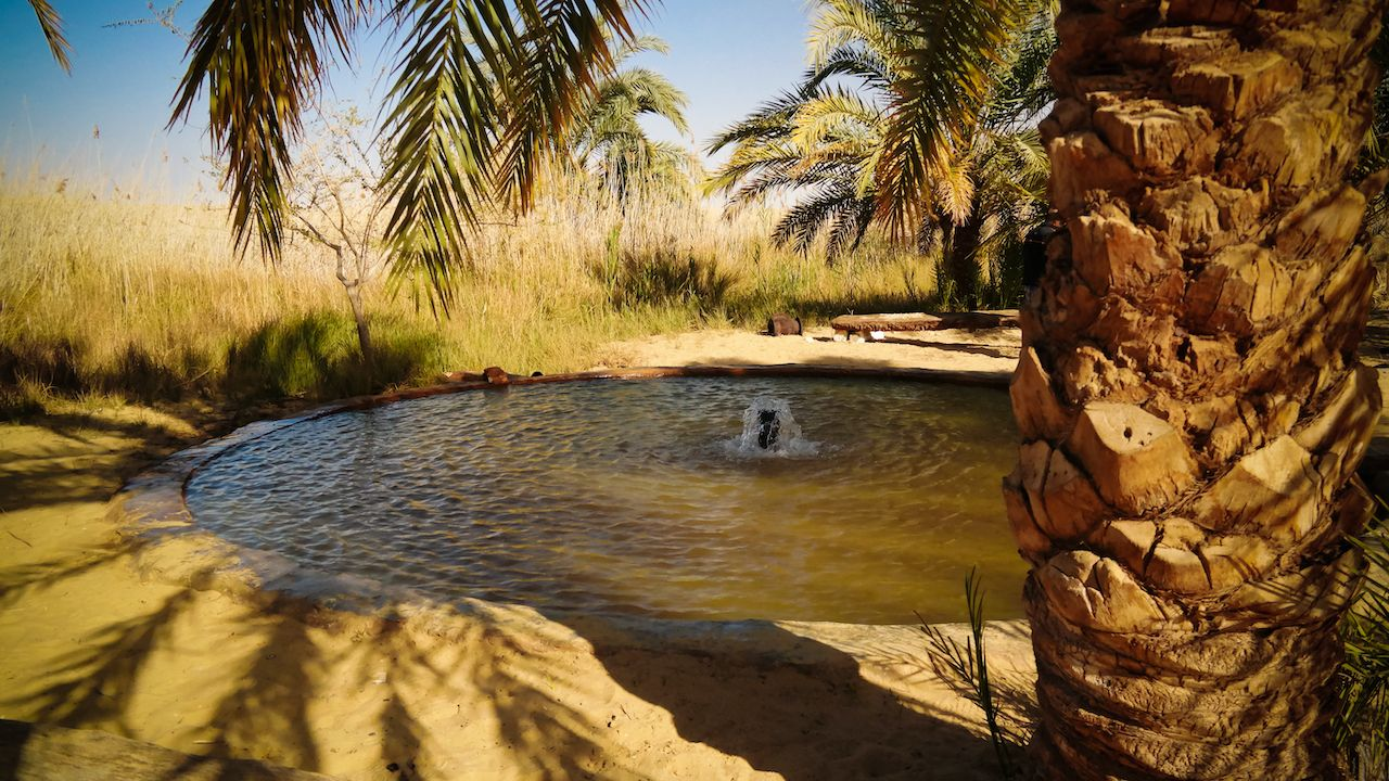 Landscape With Hot Spring In Siwa Oasis At Egypt, Siwa Oasis, Egypt