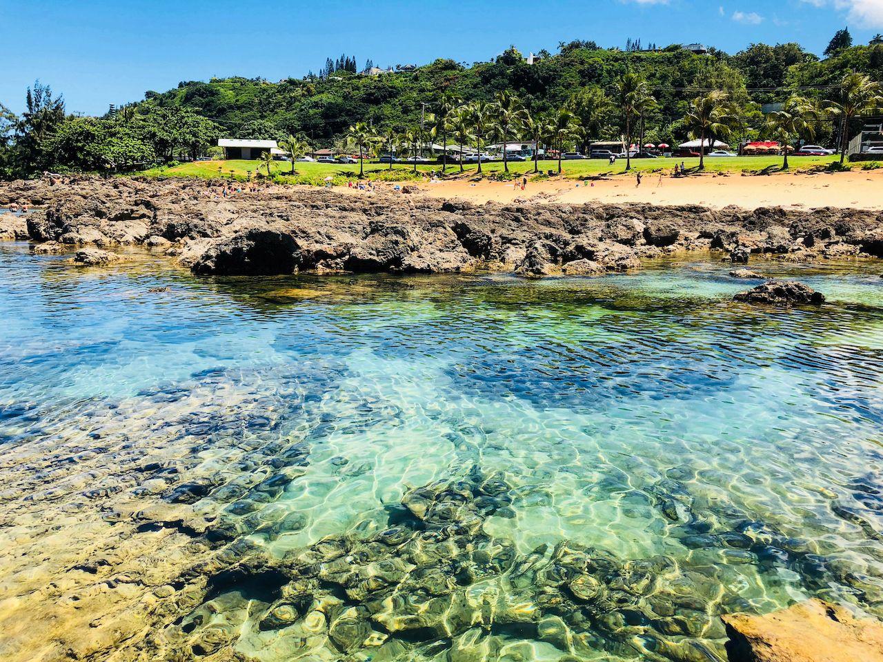 Shark's Cove North Shore, Oahu beaches for families