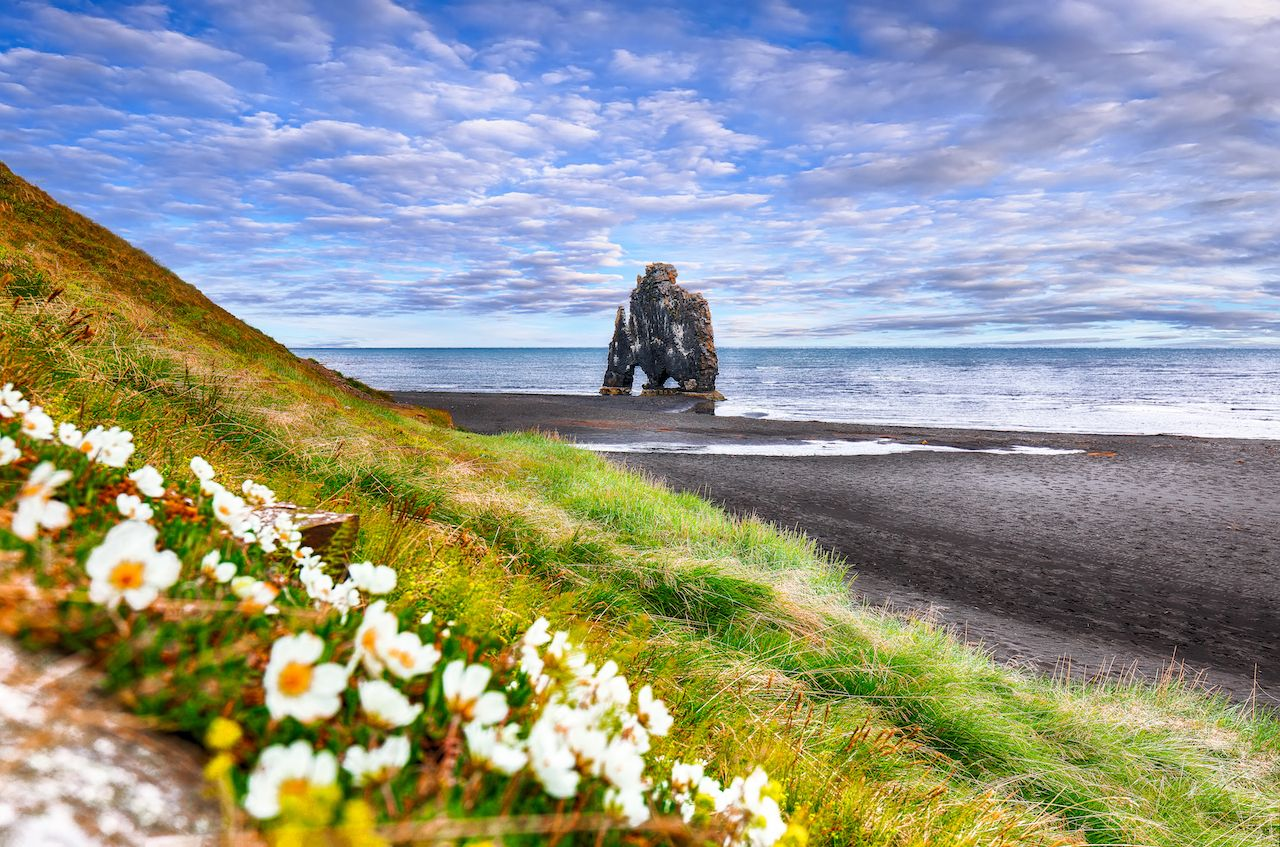 view of Hvitserkur unique basalt rock in Iceland. Location: place Hvitserkur, Vatnsnes peninsula, Iceland, Europe.,villages in Iceland