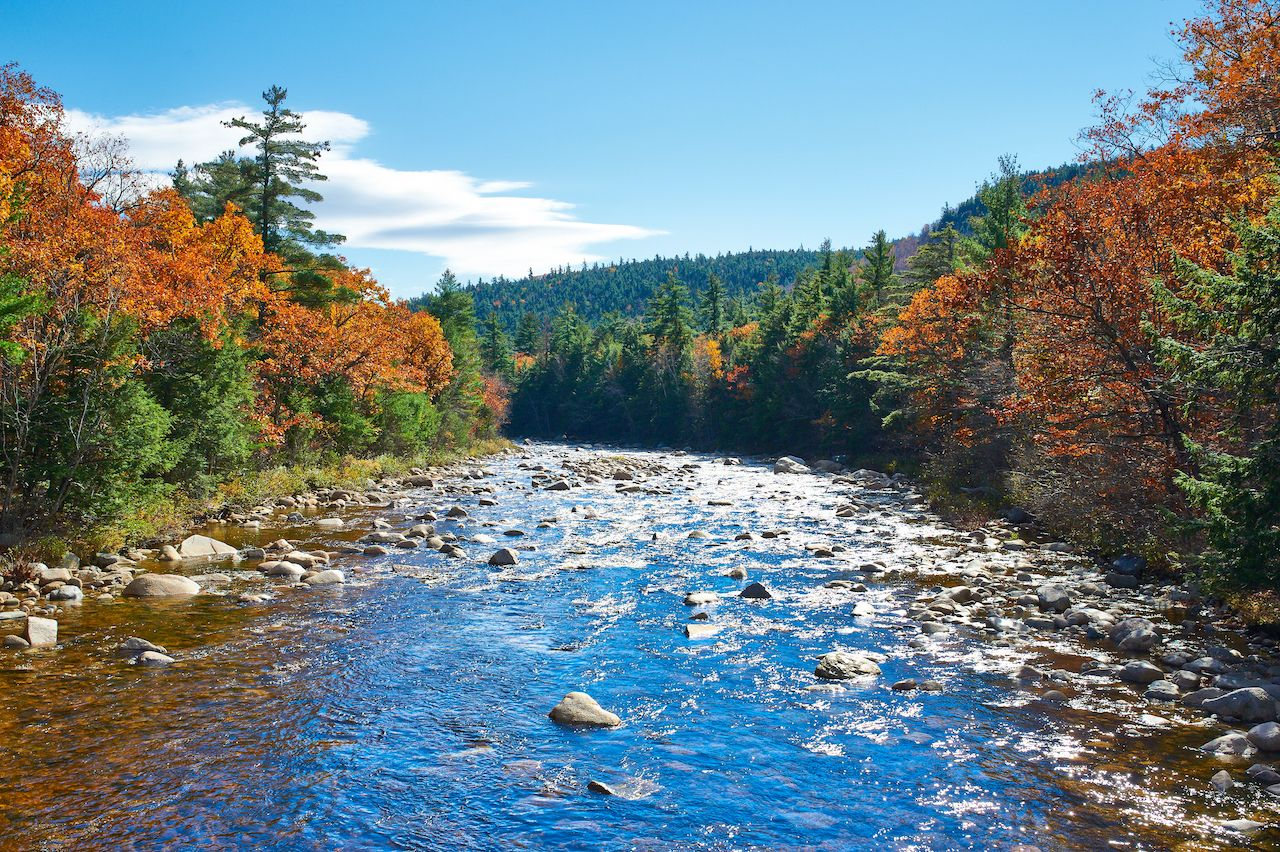 Swift,River,At,Autumn,In,White,Mountain,National,Forest,,New