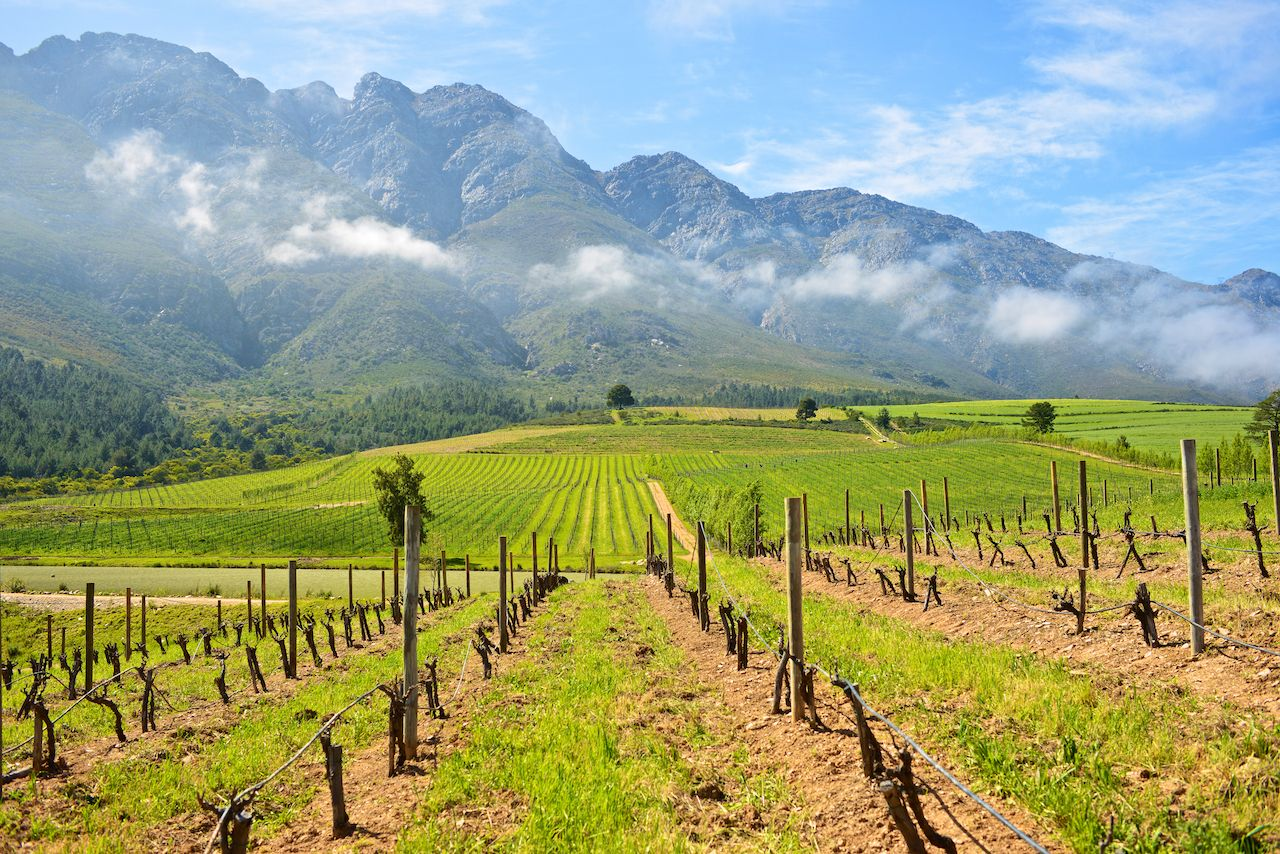 Mountain vineyards, Tulbagh, small towns in South Africa