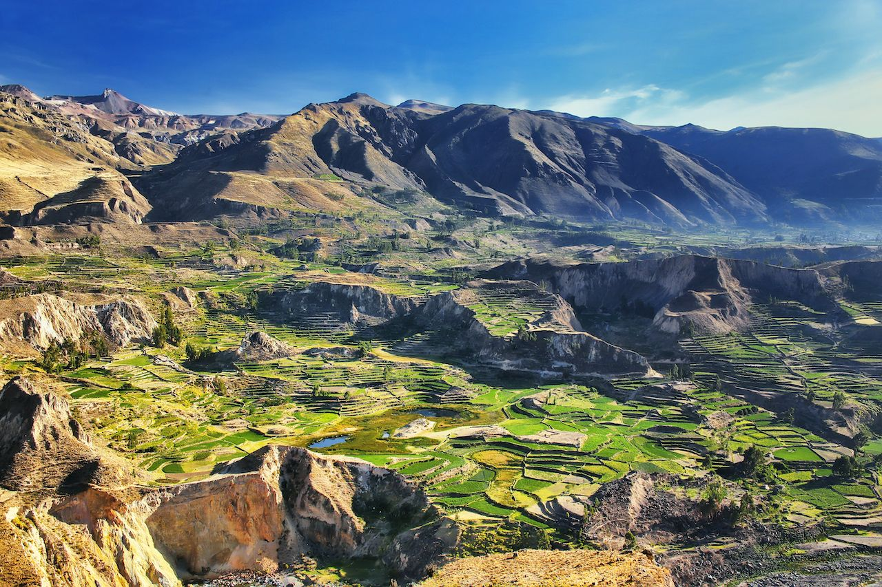 Stepped terraces in Colca Canyon in Peru. It is one of the deepest canyons in the world with a depth of 3,270 meters., best hiking in Peru
