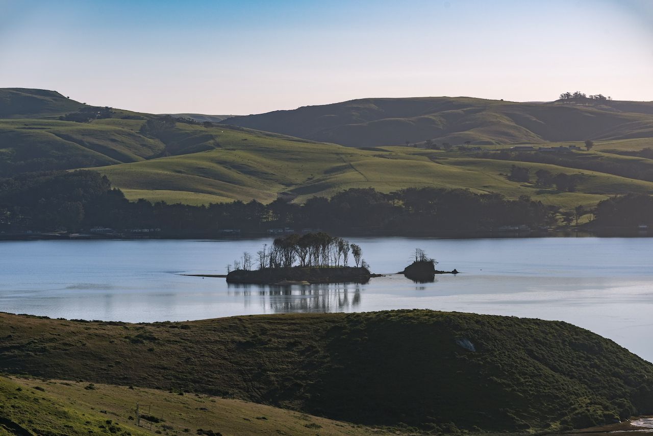 A Lonely Island in Tomales Bay,  Islands in San Francisco Bay