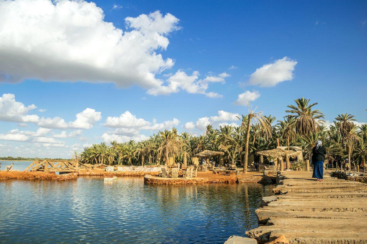 Beautiful View Of Fatnas Island Siwa Egypt, Siwa Oasis, Egypt