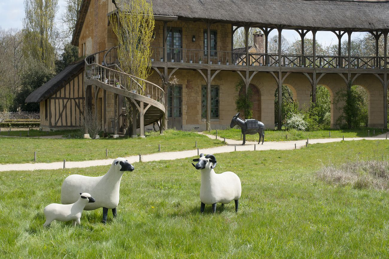 Animal sculptures Versailles, sheep and donkey