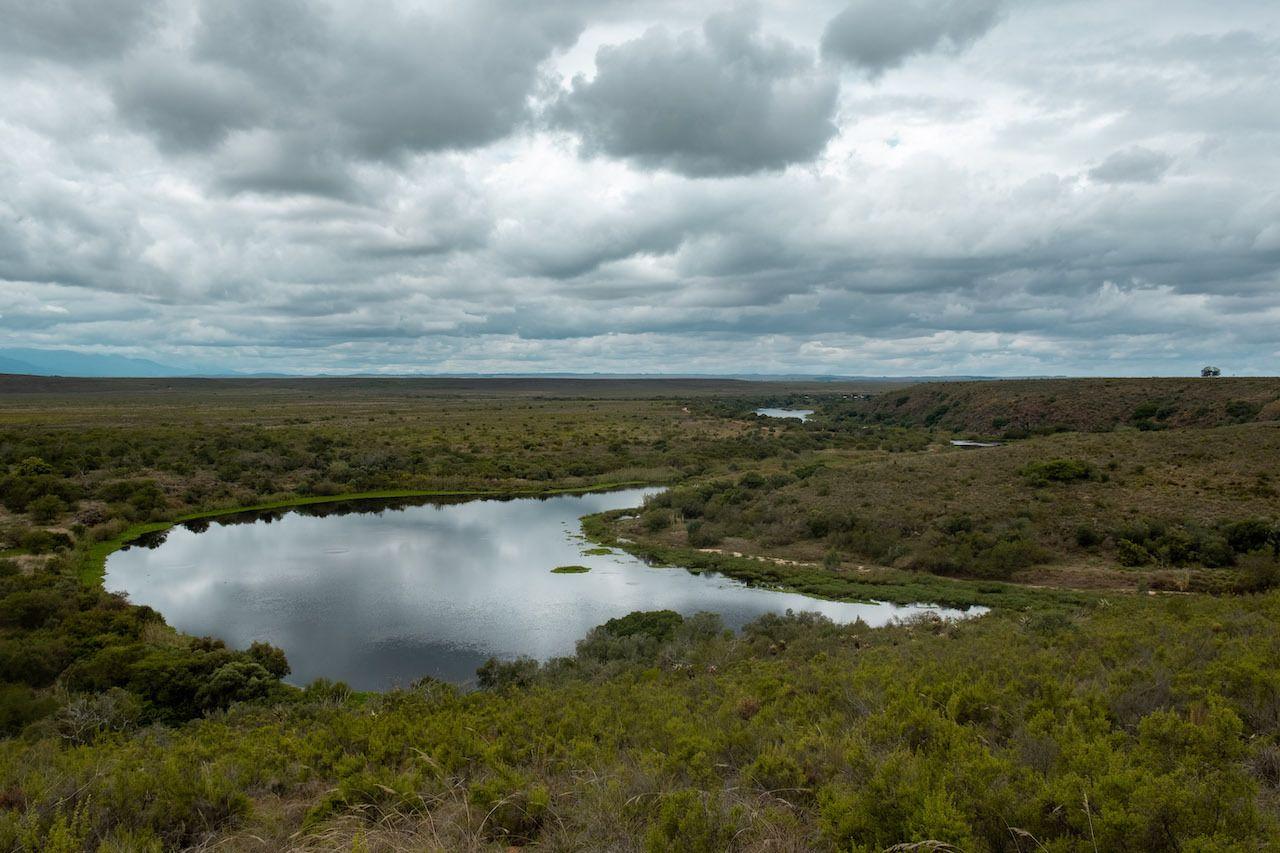 Bontebok National Park South Africa, South African road trip