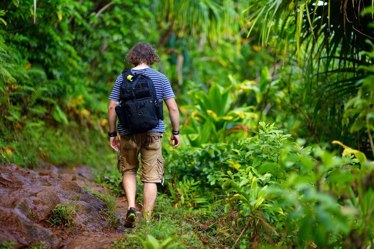 Kid-friendly-hikes-on-Oahu-Likeke-Falls-Hike-585893756, Kid-friendly hikes on Oahu