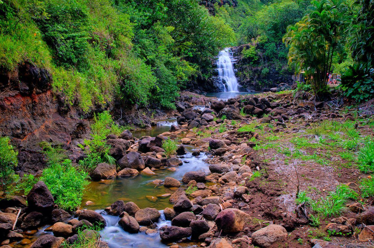 Kid-friendly-hikes-on-Oahu-Waimea-Falls-207769374, Kid-friendly hikes on Oahu