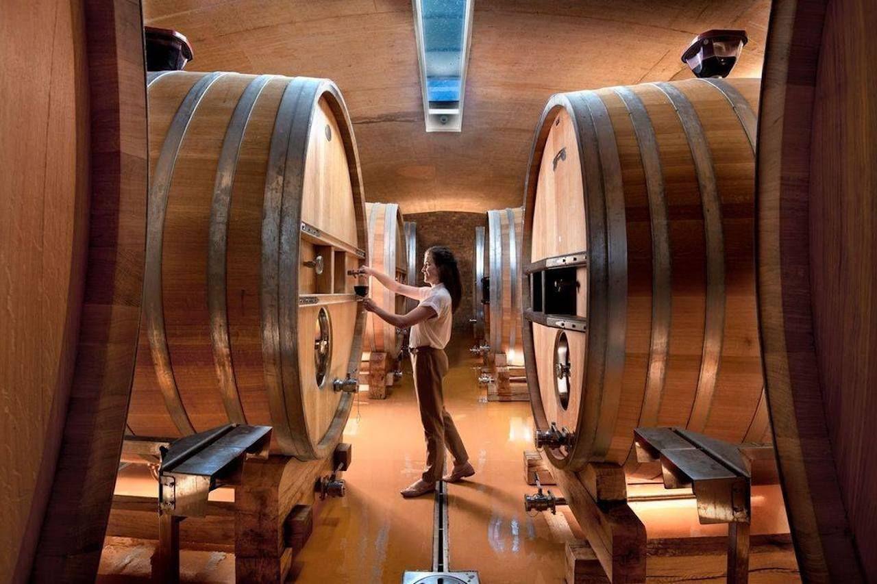 Curated Wine Experience, Franschhoek Wine Tram