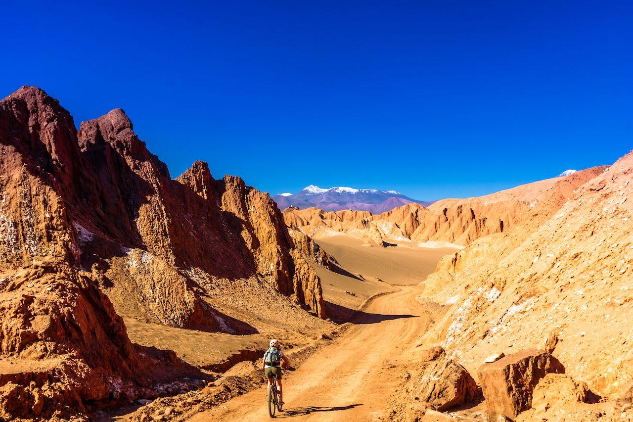 View on cyclist in Death Valley by San pedor de Atacama - Chile, Atacama Desert