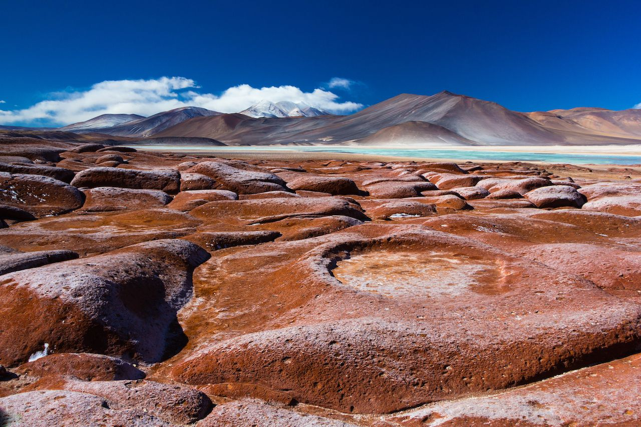 Piedras Rojas, altiplano in the Atacama Desert, Chile.