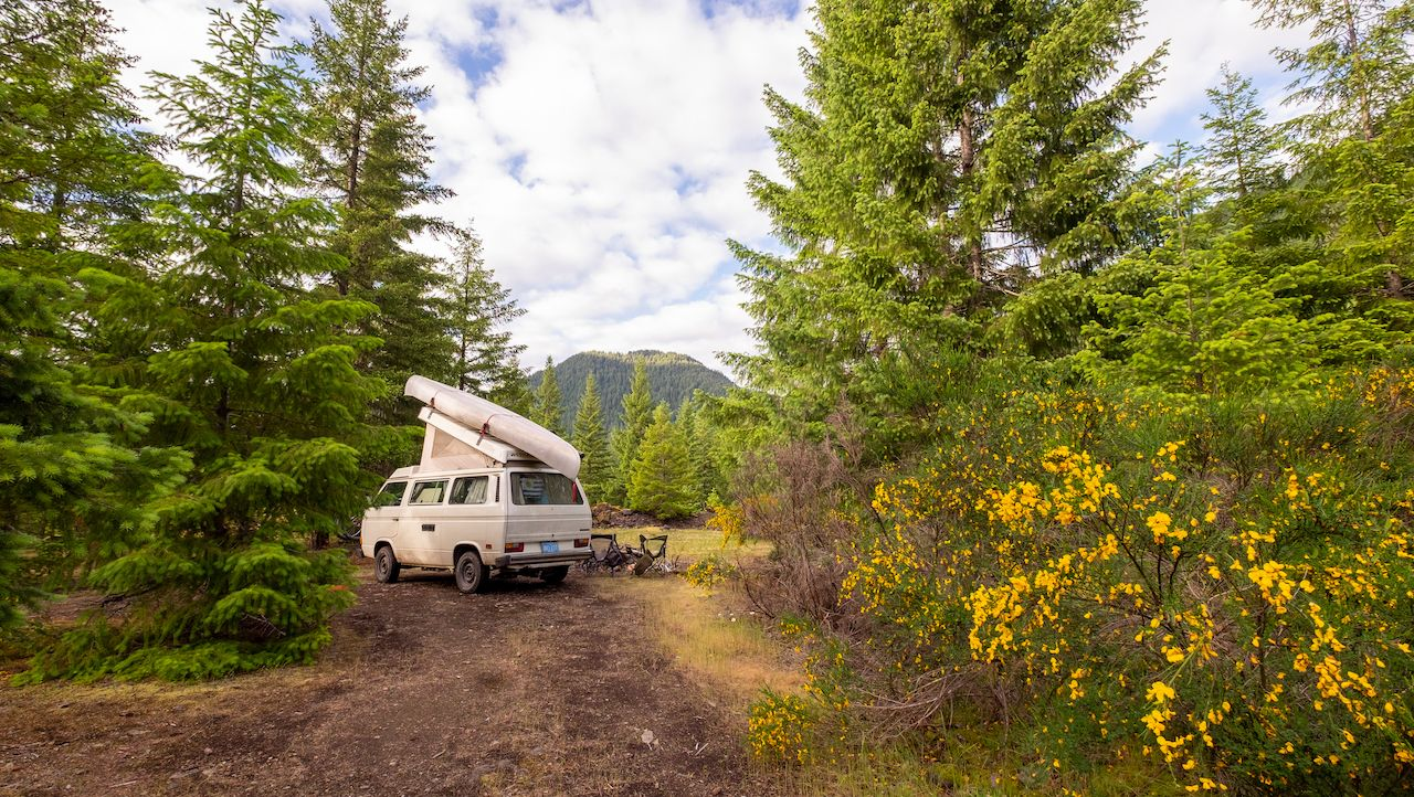 Oregon,,Usa,-,June,,9th,,2017:,Forest,Landscape,With,A, Where to camp for free in a van