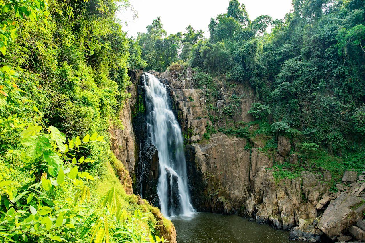 Bangkok-day-trips-Khao-Yai-National-Park