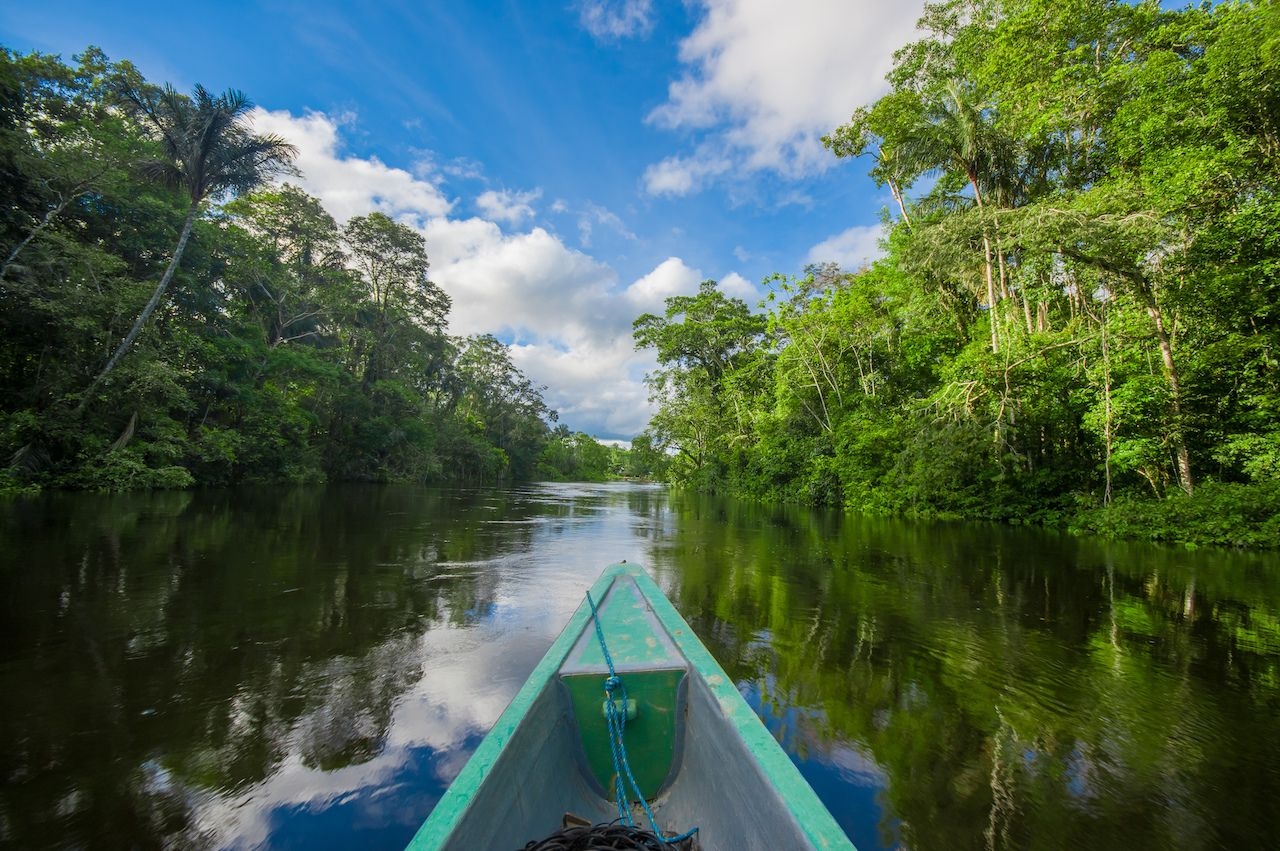 Travelling,By,Boat,Into,The,Depth,Of,Amazon,Jungles,In, Colombian Amazon Rainforest