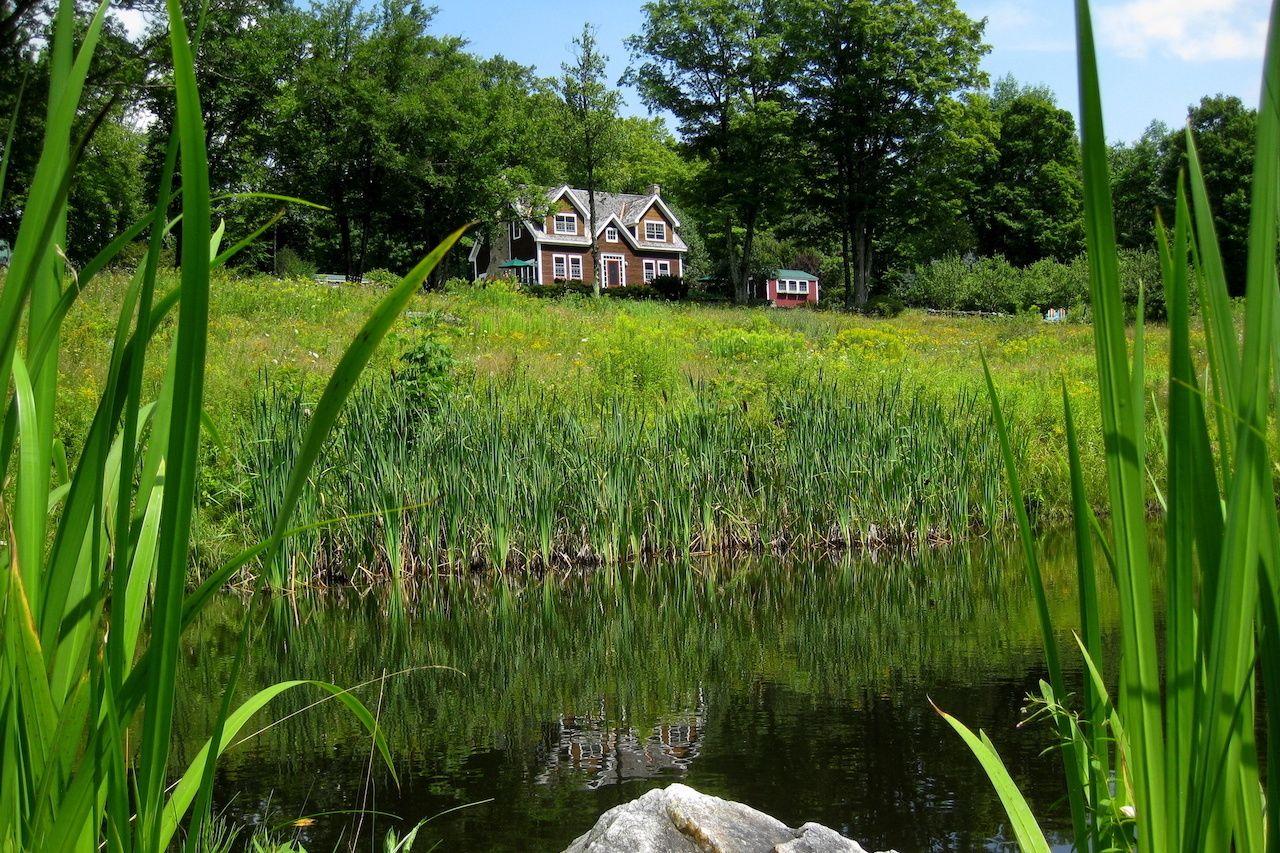 LGBTQ-friendly-lodging-New-England-frog-meadow, LGBTQ-friendly lodging New England