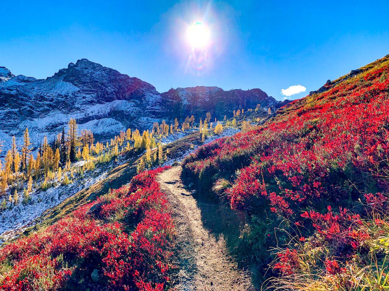 Washington, USA: Heather Maple Pass Loop trail near Mount Baker, North Cascades National Park