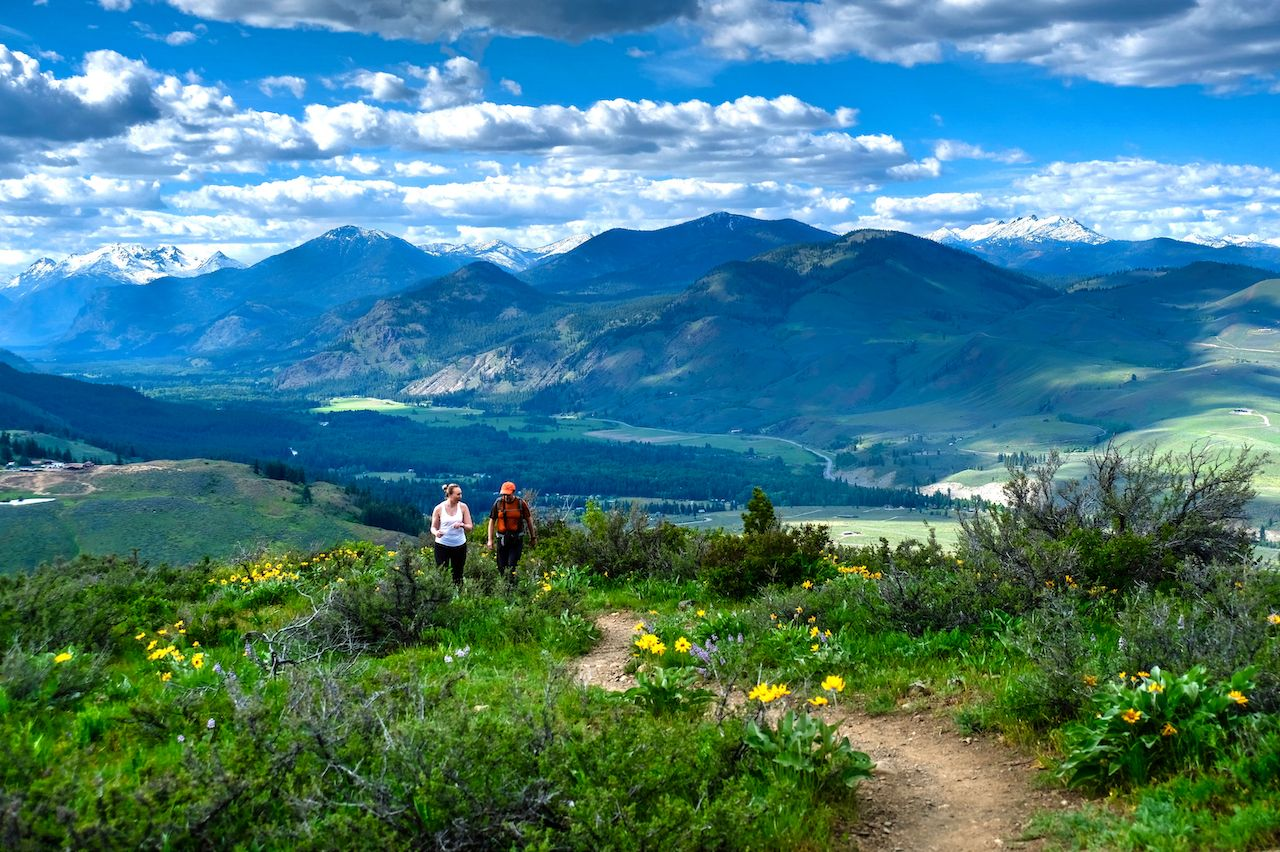 Spouses walking together on meadows in North Cascades National Park. Cascade Mountains. Winthrop. Washington. The United States., North Cascades National Park