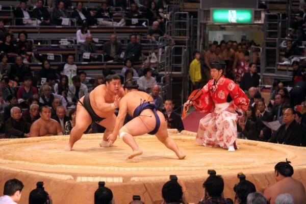 Tokyo-art-and-culture-Sumo-68019250