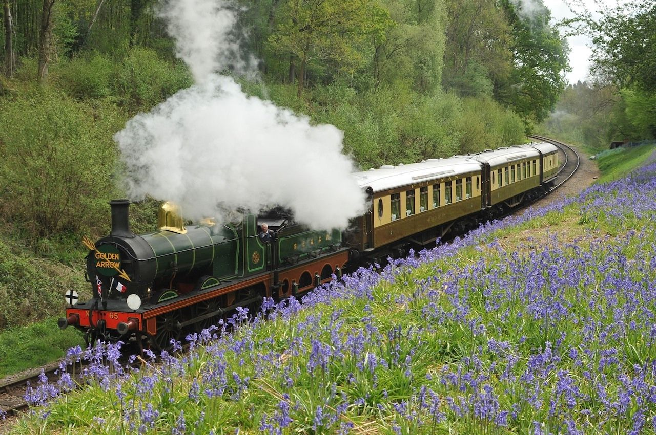 Bluebell Railway and the Golden Arrow service among the bluebells, train journeys