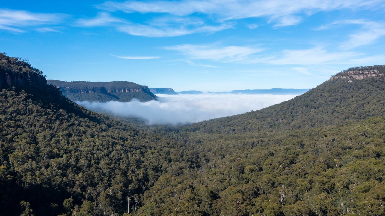 Aerial,View,Of,Fog,In,Megalong,Valley,Near,Blackheath,In, Camping near Sydney