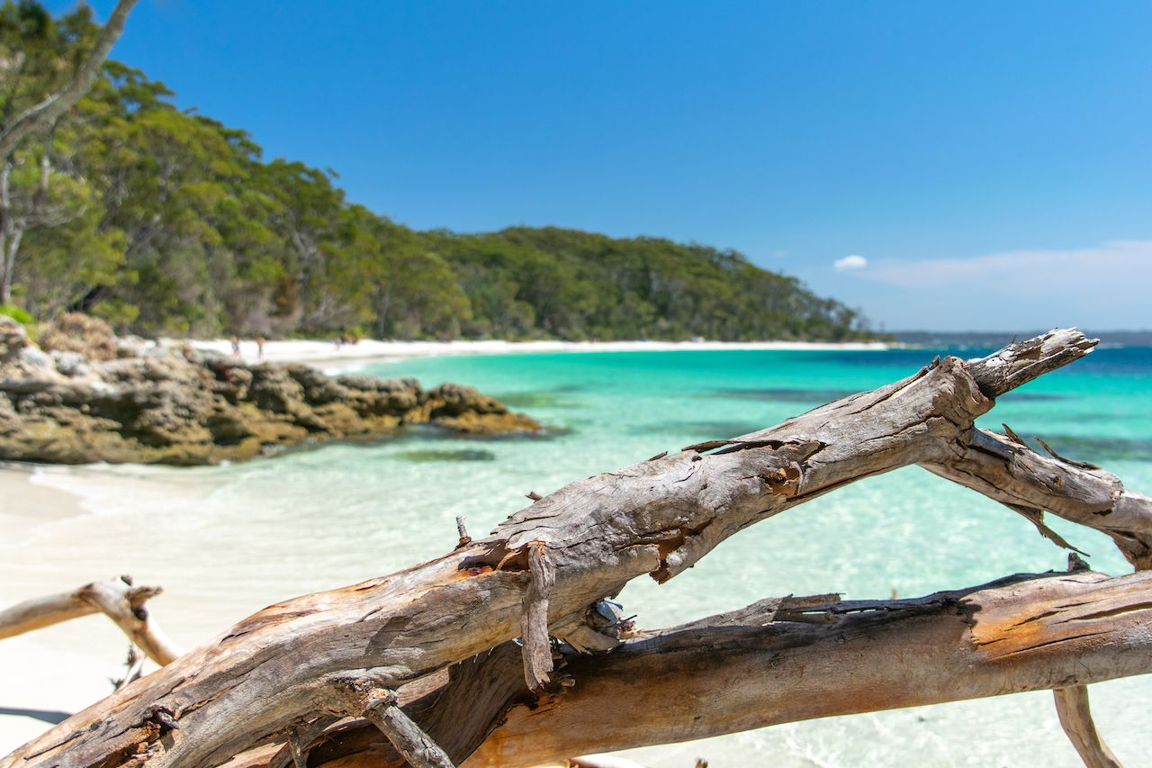 Stunning,View,Of,Murrays,Beach,,Located,Within,Booderee,National,Park, Camping near Sydney
