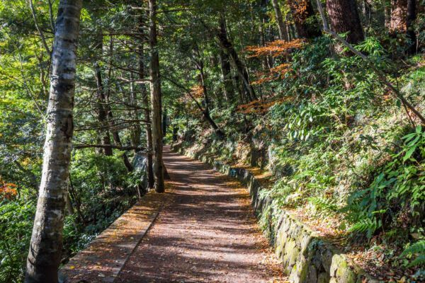 parks-in-Tokyo-Mt-Takao-259880009