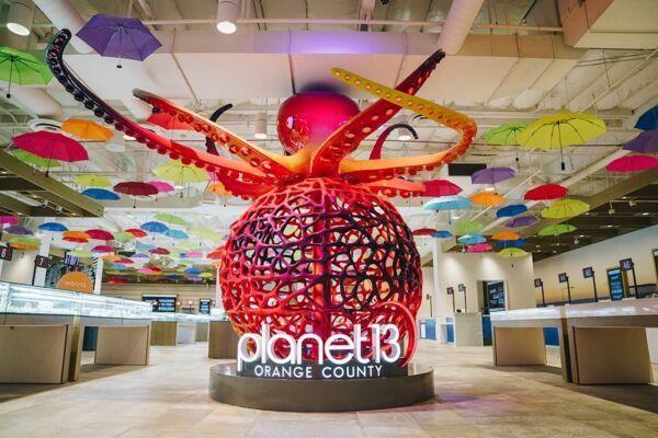 planet-13-octopus