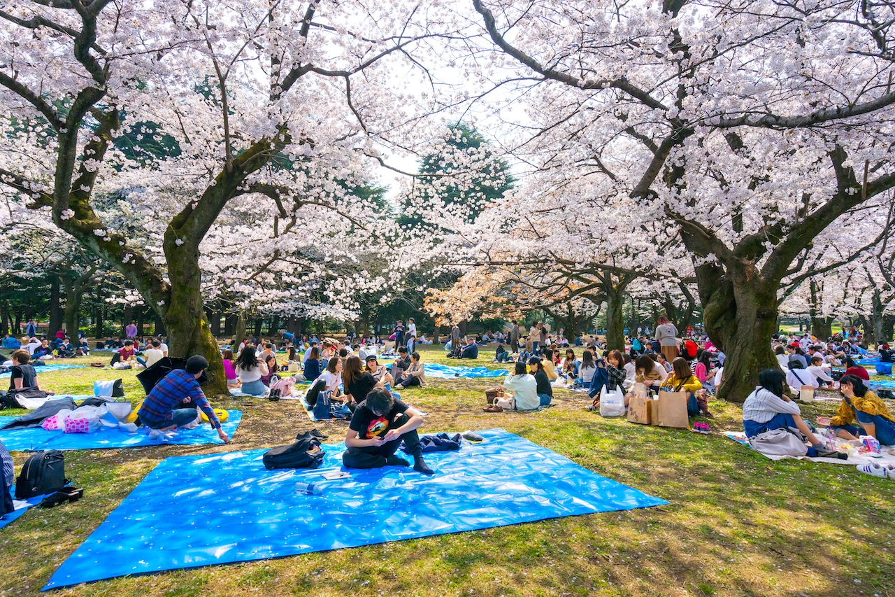 yoyogi-park-tokyo-day-one-1088194640, first day in tokyo