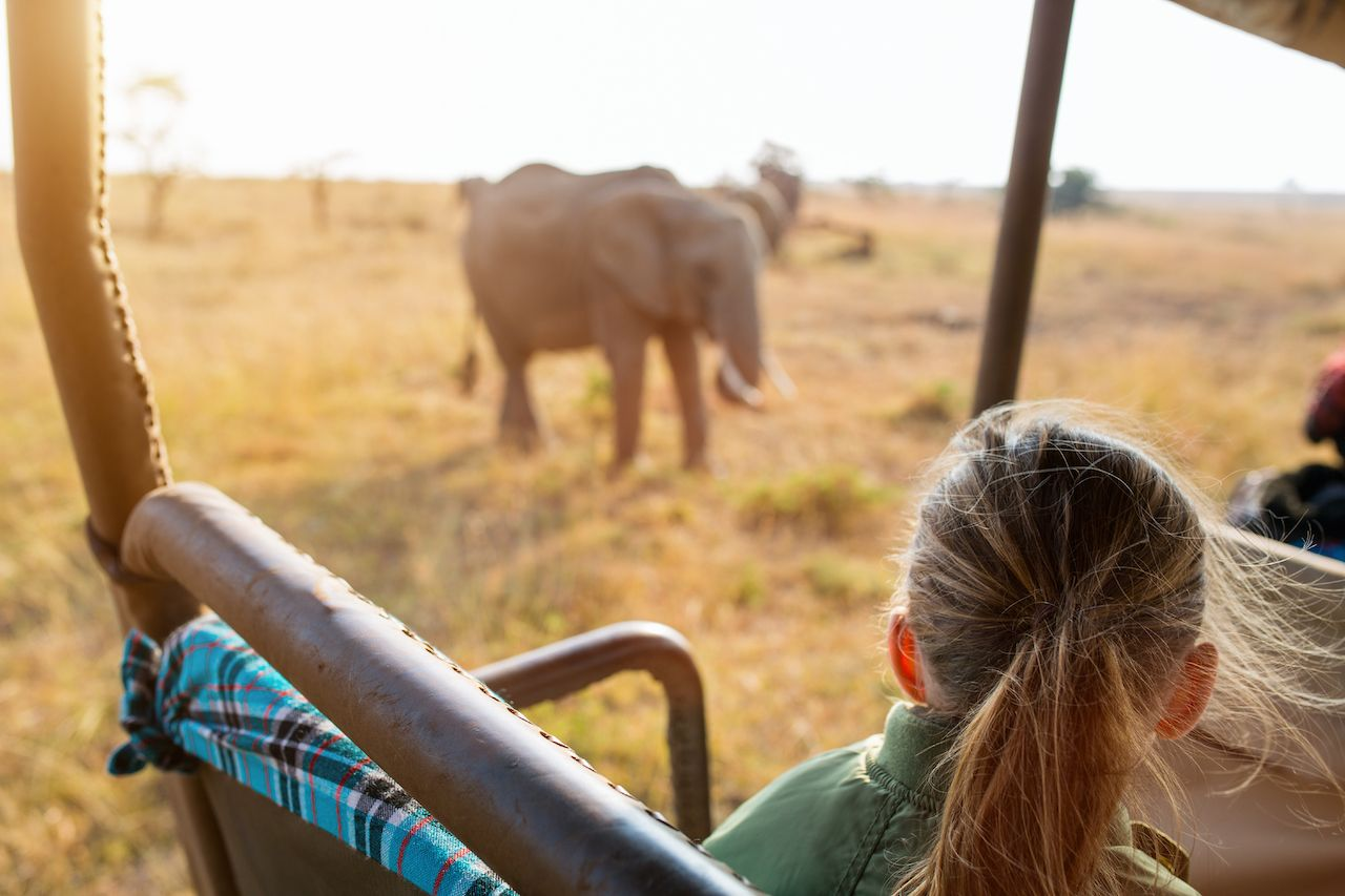 Adorable,Little,Girl,In,Kenya,Safari,On,Morning,Game,Drive