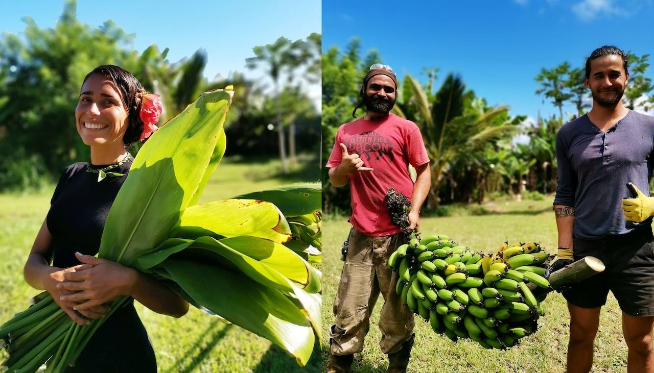 Workers and produce on Big Island farms Hawaii