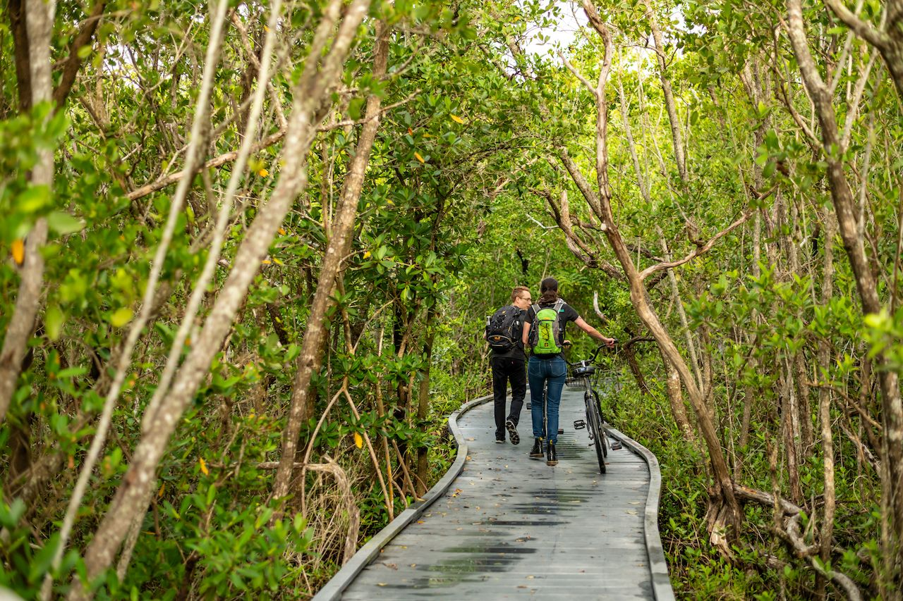 Hike and bikes: 6 great trails on The Beaches of Fort Myers & Sanibel