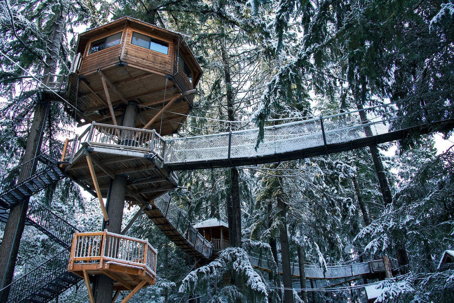 Exterior-majestree-treehouse-most-wishlisted-airbnbs-in-the-pacific-northwest