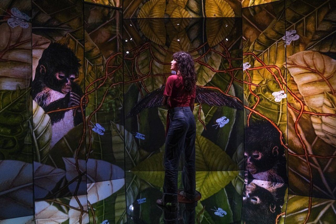 Frida- La Experiencia-Inmersiva-exhibition-visitor