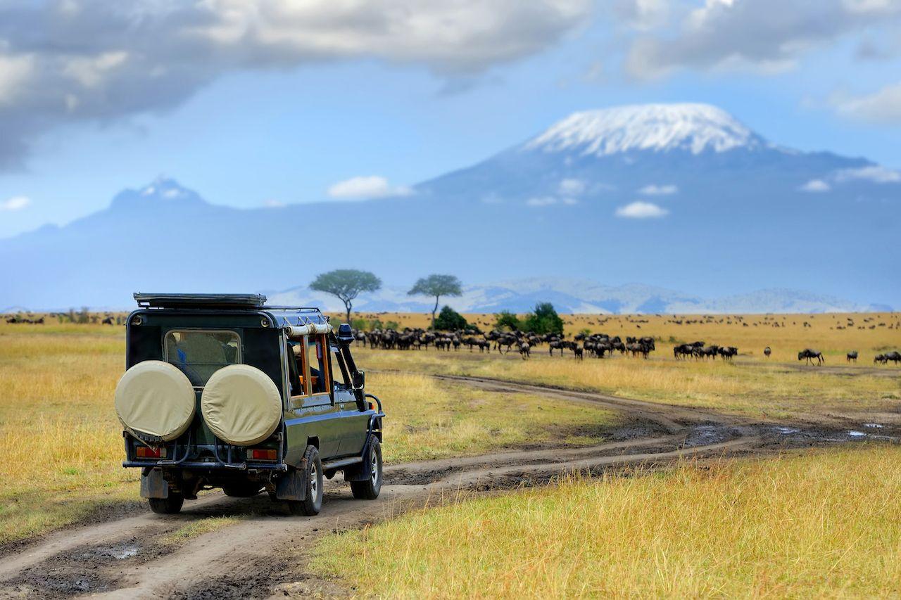 Safari,Game,Drive,With,The,Wildebeest,,Masai,Mara,Reserve,In