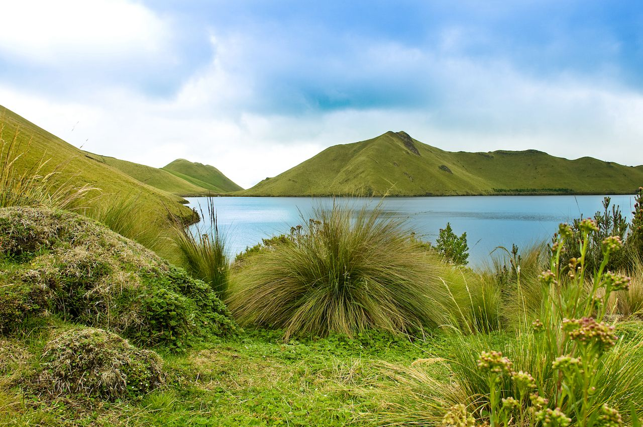 One of the Mojanda Lakes, with stunningly green pajama grasses in the foreground  and green hills in background