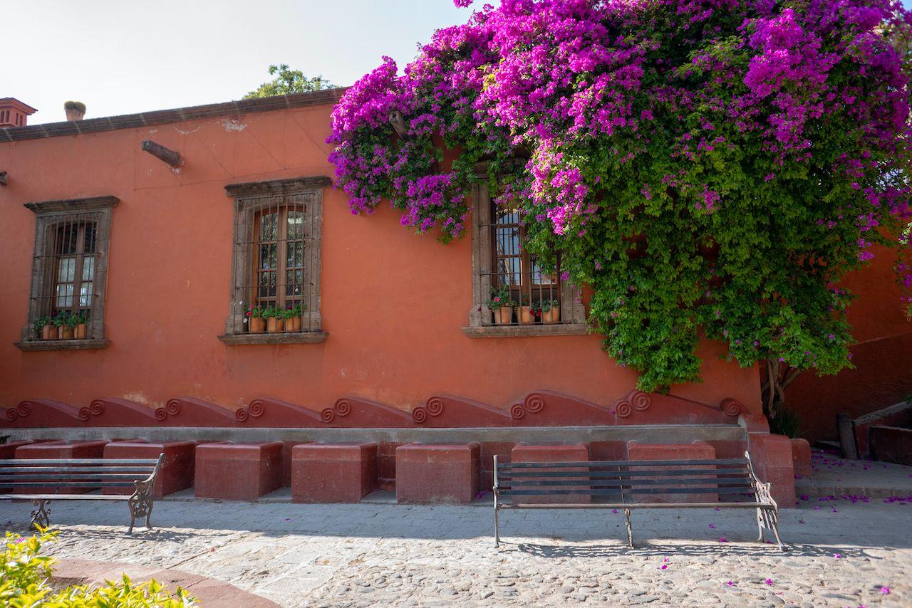 San,Miguel,De,Allende,,Guanajuato,/,Mexico,-,March,8,