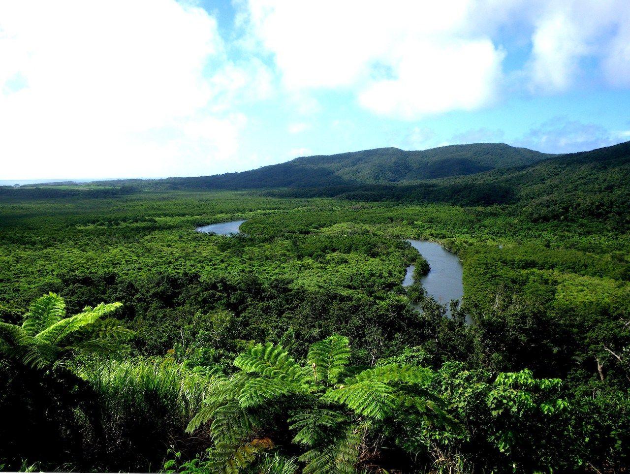Amami-Oshima Island, Tokunoshima Island, Northern part of Okinawa Island, and Iriomote Island, Japan